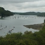 helford river to gweek from helford passage