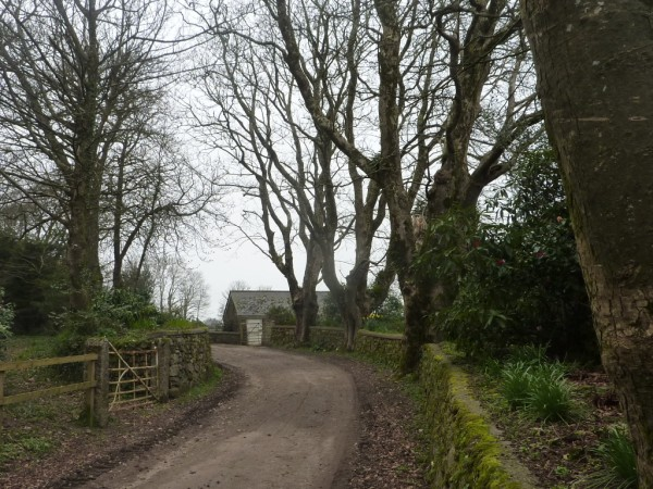 country lane near penwarne