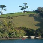 porth creek to quay cottage
